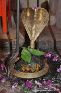 dhareshwar-mahadev-temple (14)