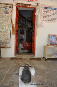 dhareshwar-mahadev-temple (16)